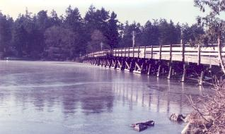 Steilacoom Lake is frozen over