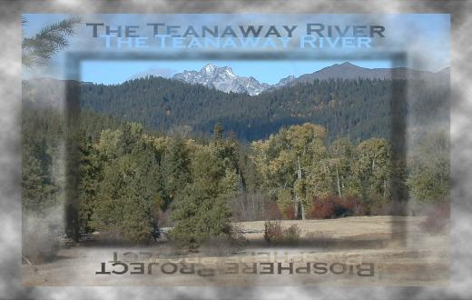 Teanaway River near the Stuart Range